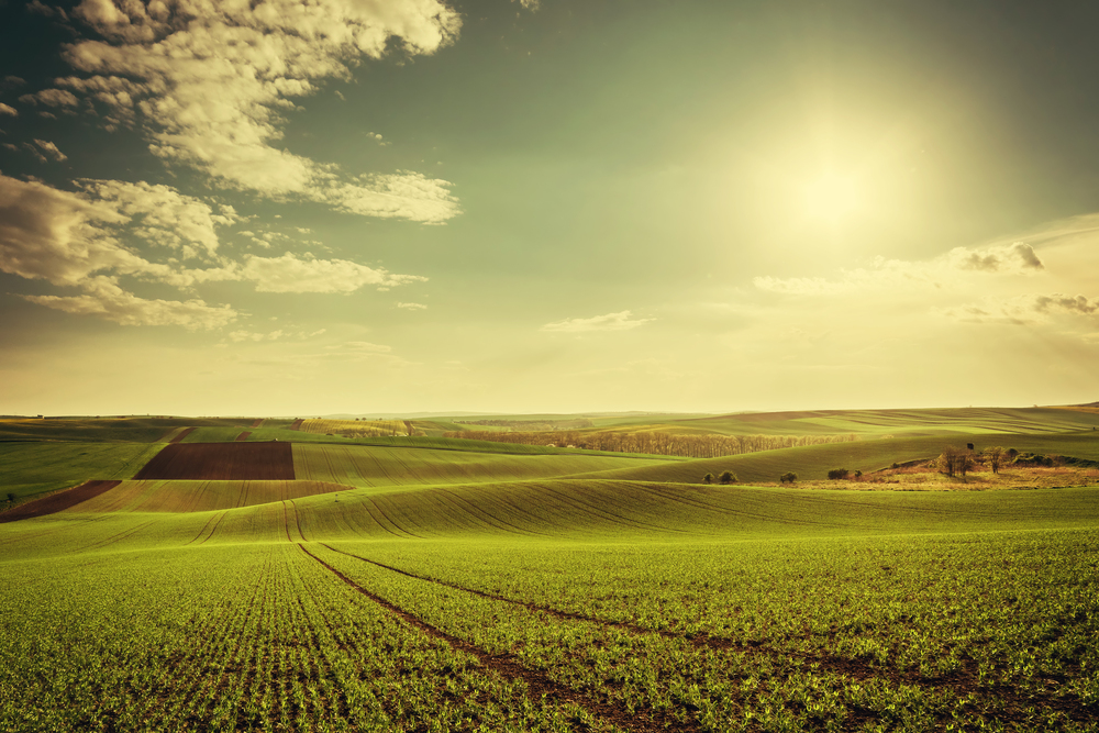 Agricultural,Landscape,With,Green,Fields,On,Hills,And,Sun,,Vintage